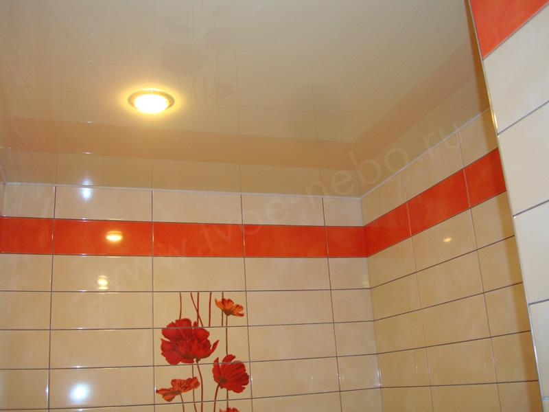 Peindre en couleur un plafond fort de france prix for Peindre un plafond en lambris pvc